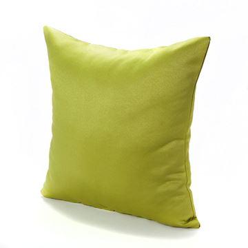 תמונה של כרית נוי נועם ירוק